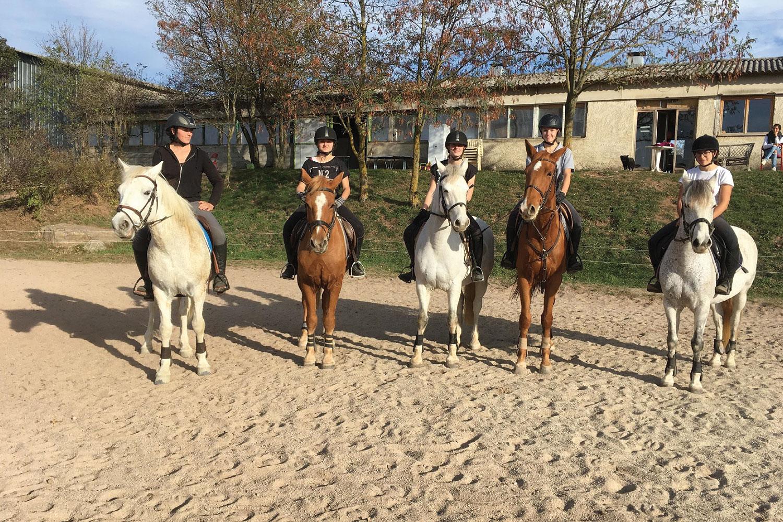 Demi pension chevaux club