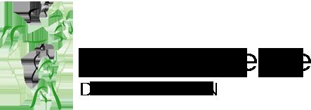 logo centre equestre antoulin