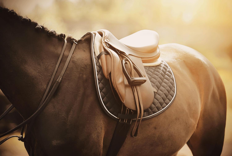 centre equestre antoulin